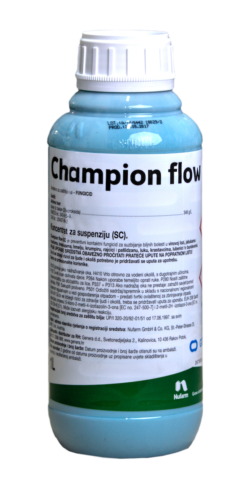 Champion Flow png